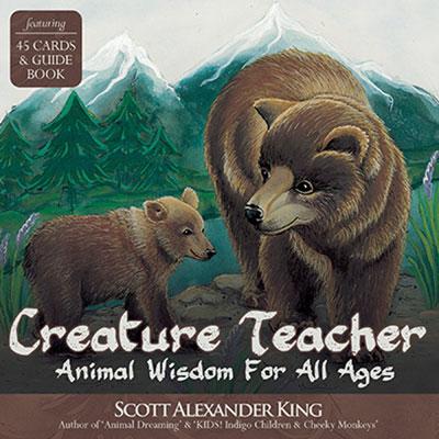 Creature Teacher Cards