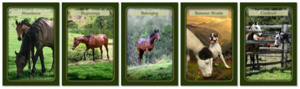 Horse Power Message Cards