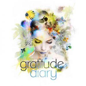 2019 Gratitude Diary