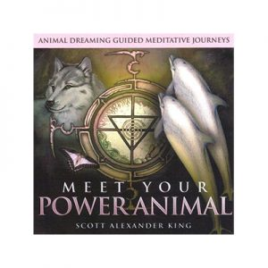 Meet Your Power Animal