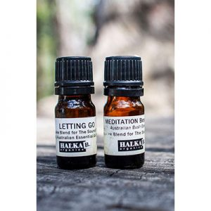 """Meditation"" and ""Letting Go"" House Blends 5ml"