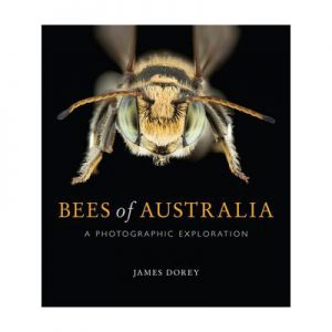 Bees of Australia A Photographic Guide