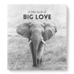 Little Book of Big Love