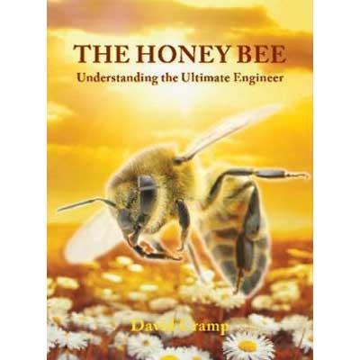 The Honey Bee Understanding the Ultimate Engineer